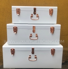 Metal White Trunk Box with Rose Gold Details3